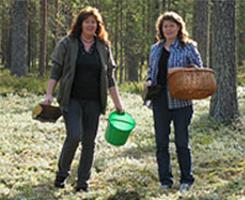 Ann & Carina i blåbärspulver skogen