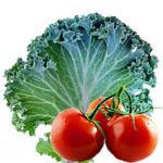 kale_tomato